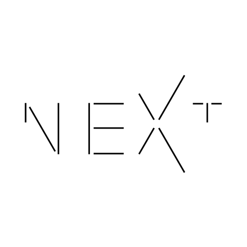 NEXT architects zoekt ambitieuse Bureaumanager